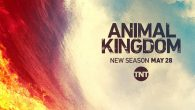 Animal Kingdom ( 1ª à […]