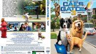 Como Cães e Gatos 3 […]