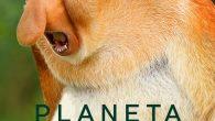 Planeta Bizarro ( 1ª Temporada […]